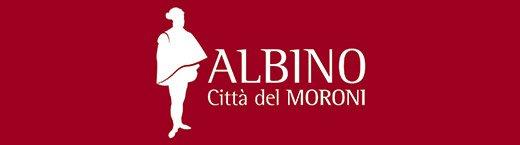 Biblioteca di Albino